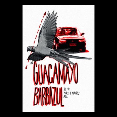 GUACAMAYO BARBAZUL